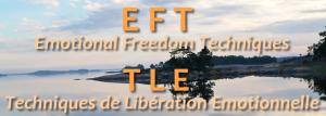 1b EFTTLE-300x107